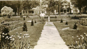 Historic Photo of Jackson Perkins Estate Rose Garden. Courtesy Newark Arcadia Historical Society.