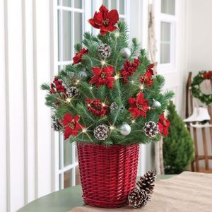 This lovely decorated tree was featured by Fine Gardening.