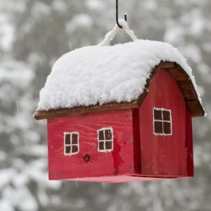 Red bird house hanging outdoors in winter covered with snow