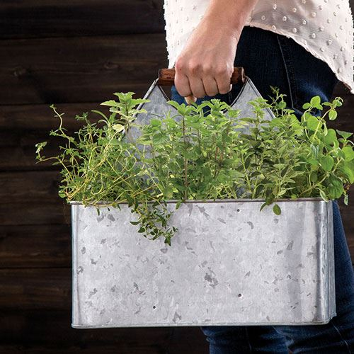 10 gardening gifts for small spaces - Gifts for small apartments ...