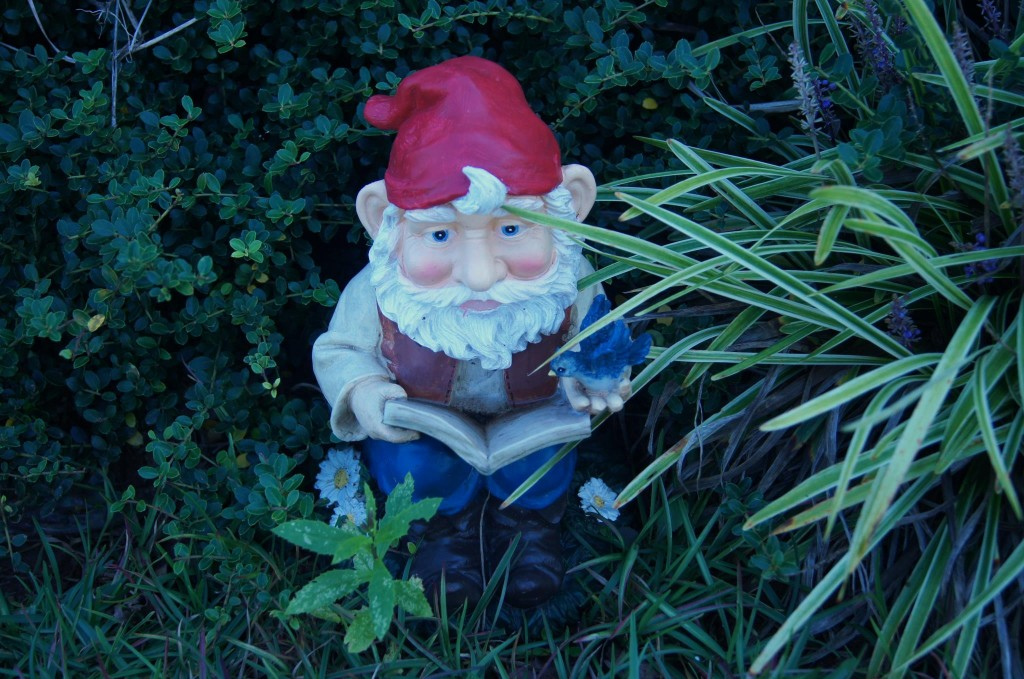 My garden gnome, Rolf, enjoying the afternoon.