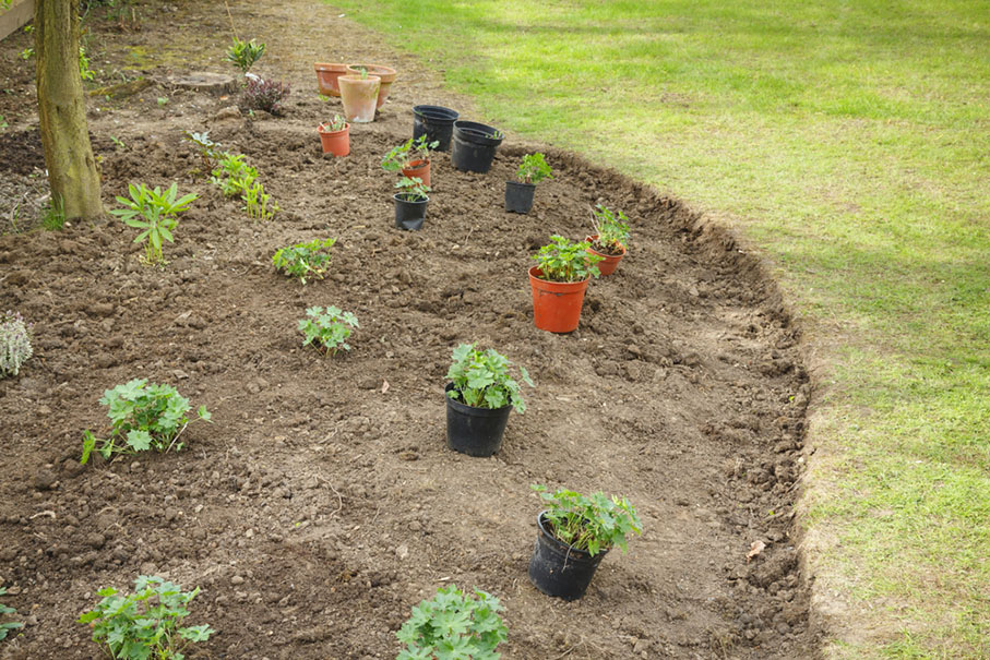 various potted plants sitting in a freshly made flower bed ready for planting